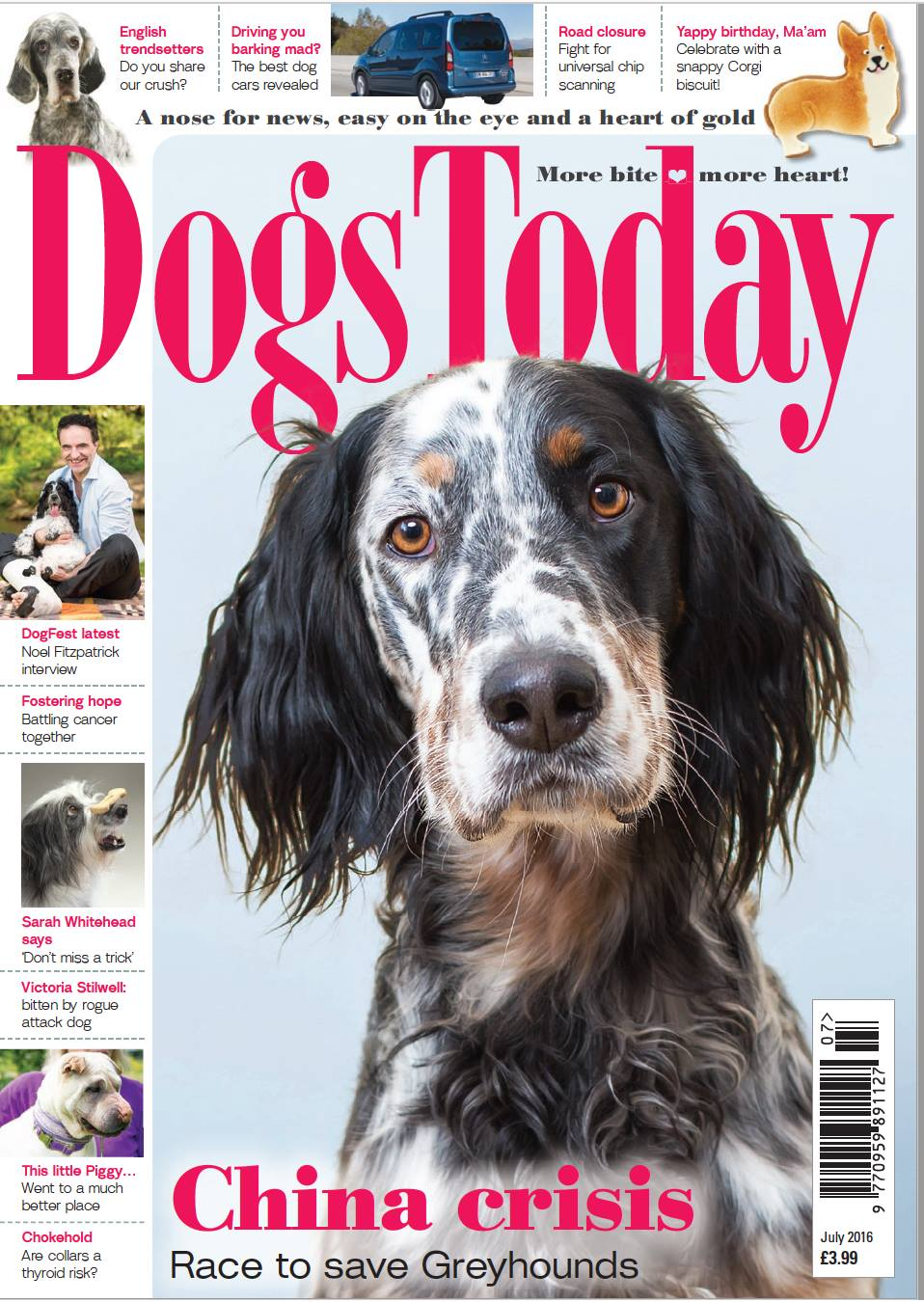 Dogs-Today-July-2016