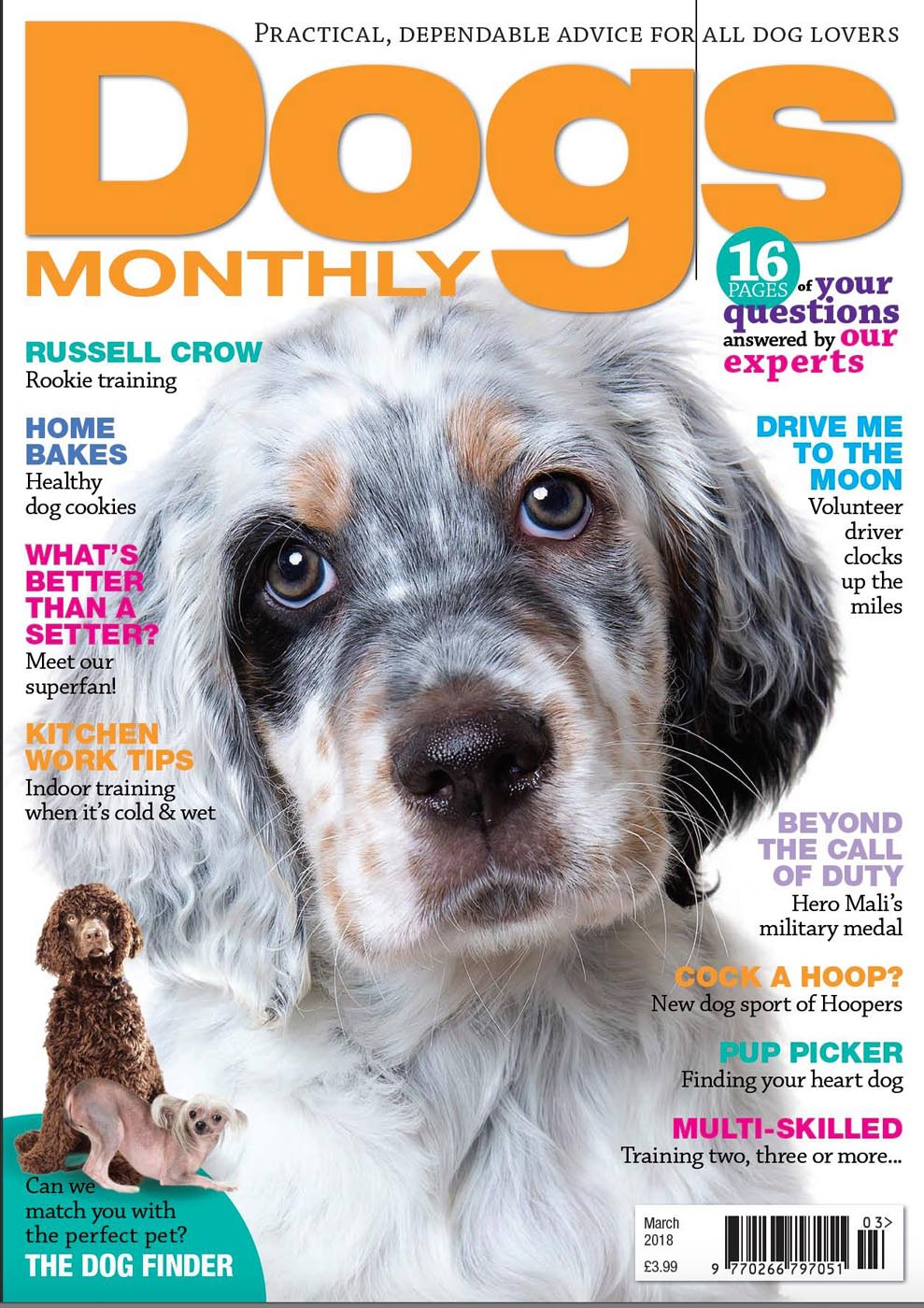 Dogs Monthly March 2018 Baby Hobson