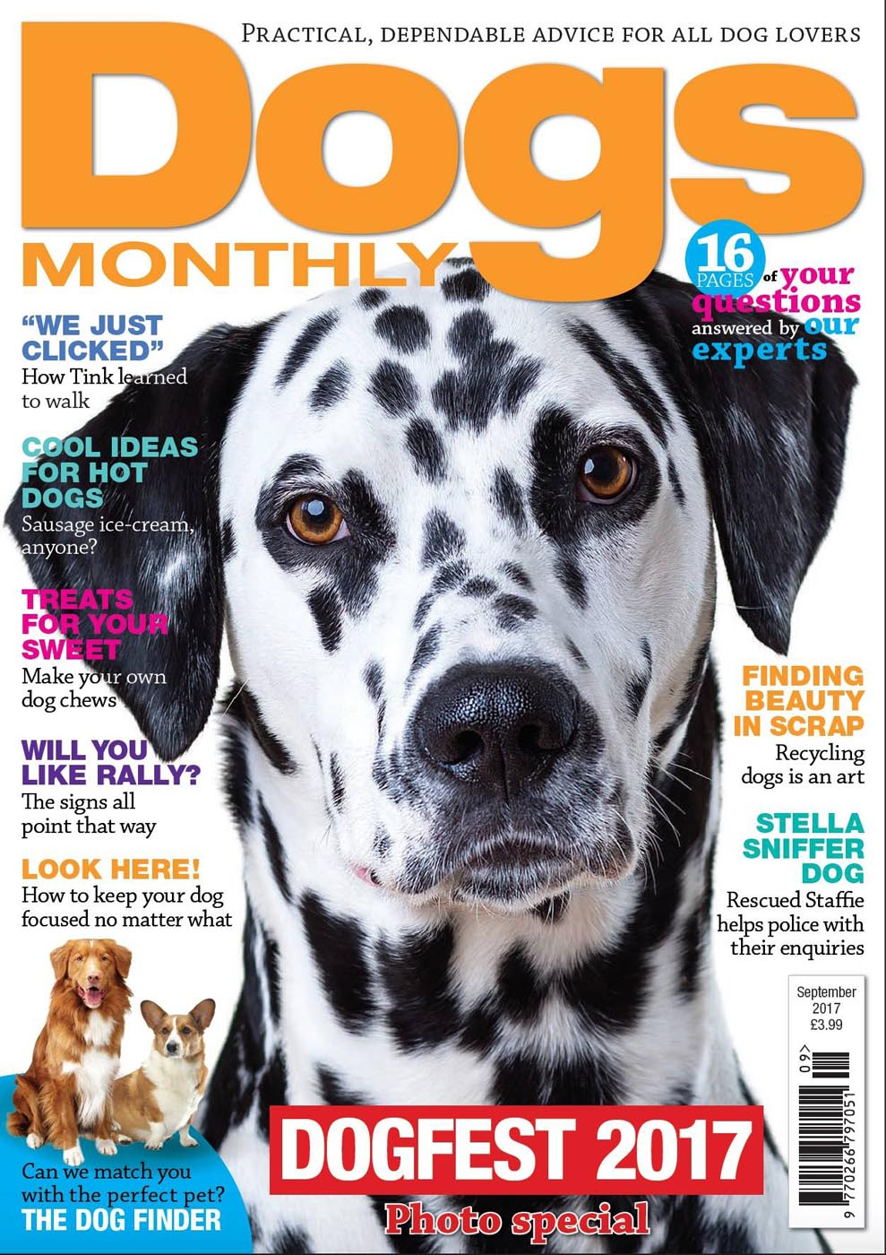 Dogs Monthly Sept 2017