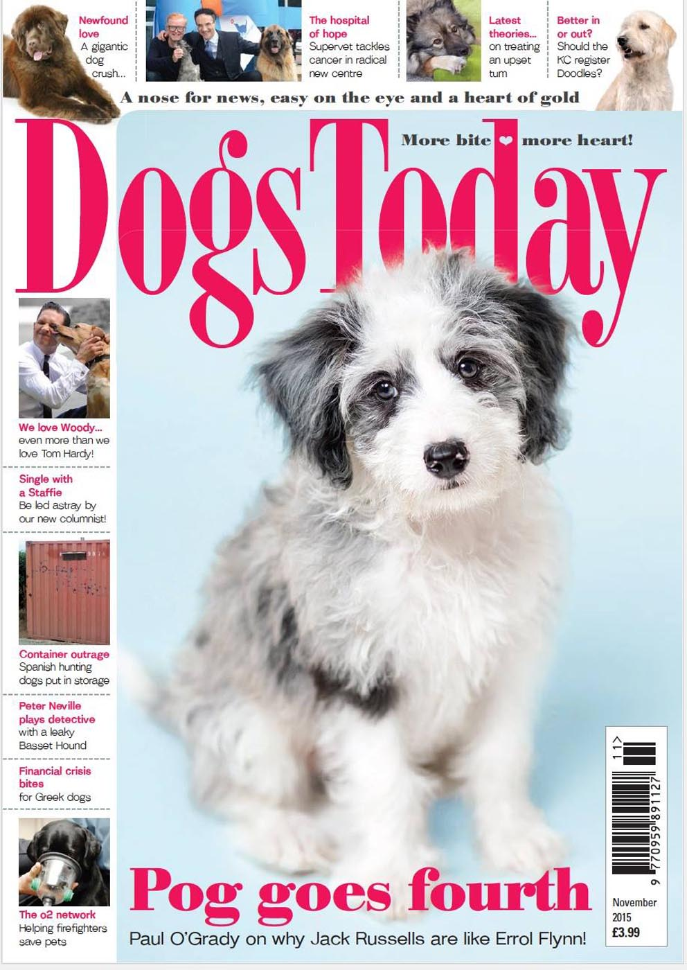 Dogs Today November 2015