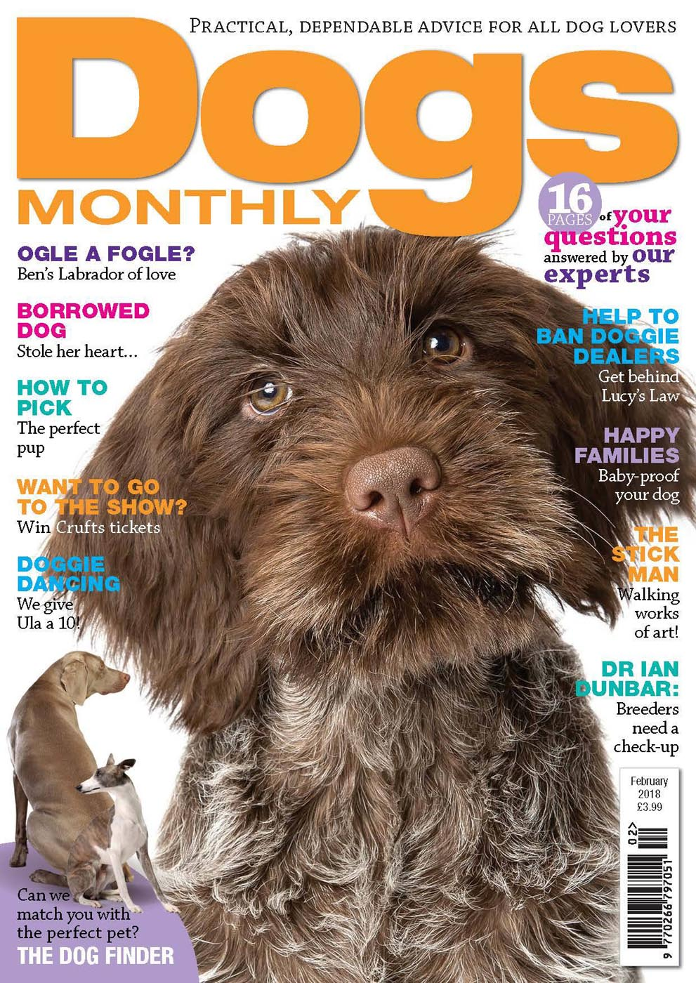 Feb 2018 Dogs Monthly