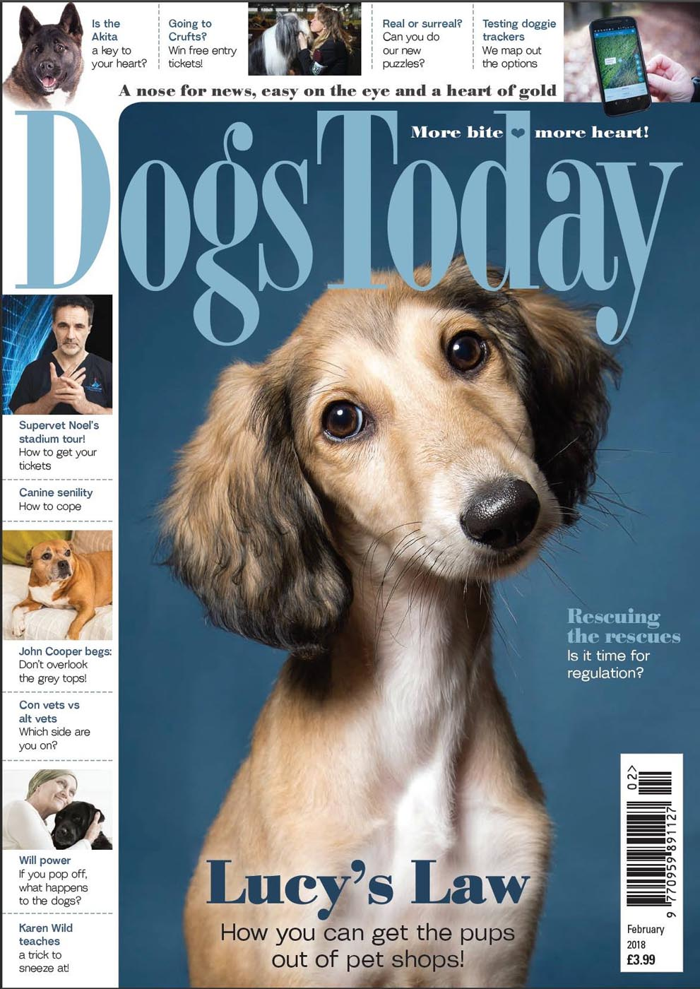 Feb 2018 dogs Today